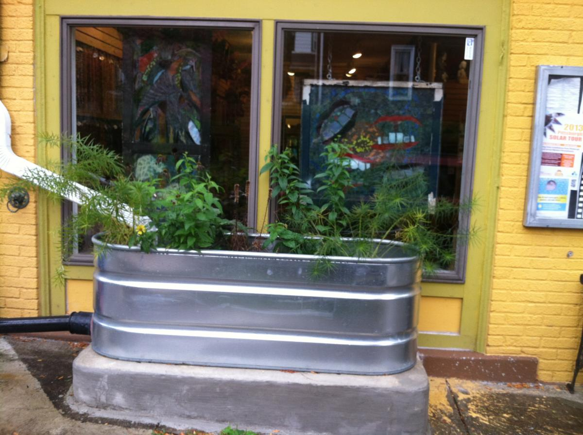 Rain garden planter box garden ftempo for Rain gutter planter box