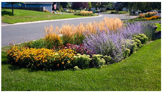 Bioretention Areas, Or Rain Gardens, Are Landscaping Features Adapted To  Provide On Site Capture And Treatment Of Stormwater Runoff.