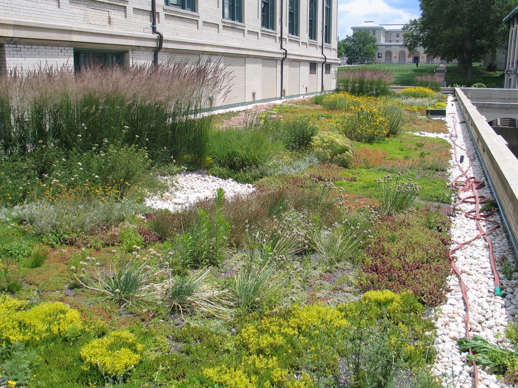 Green Solution - Green Roof | 3 Rivers Wet Weather